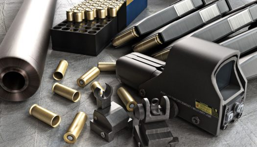 Ammo Independence: The Firearms Survival Guide Review