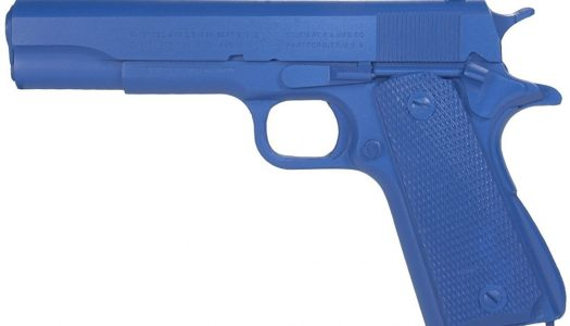 Ring's Blue Training Gun Review