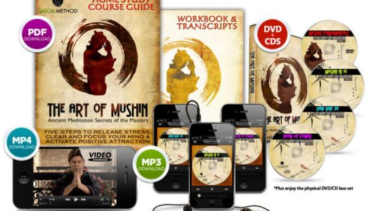 The Art of Mushin Meditation Course